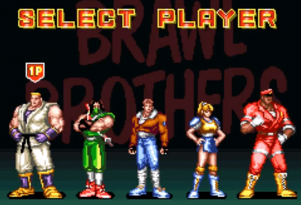 brawl brothers snes characters