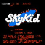 Sky Kid Enhanced Edition